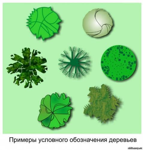 Обозначение на схеме деревьев